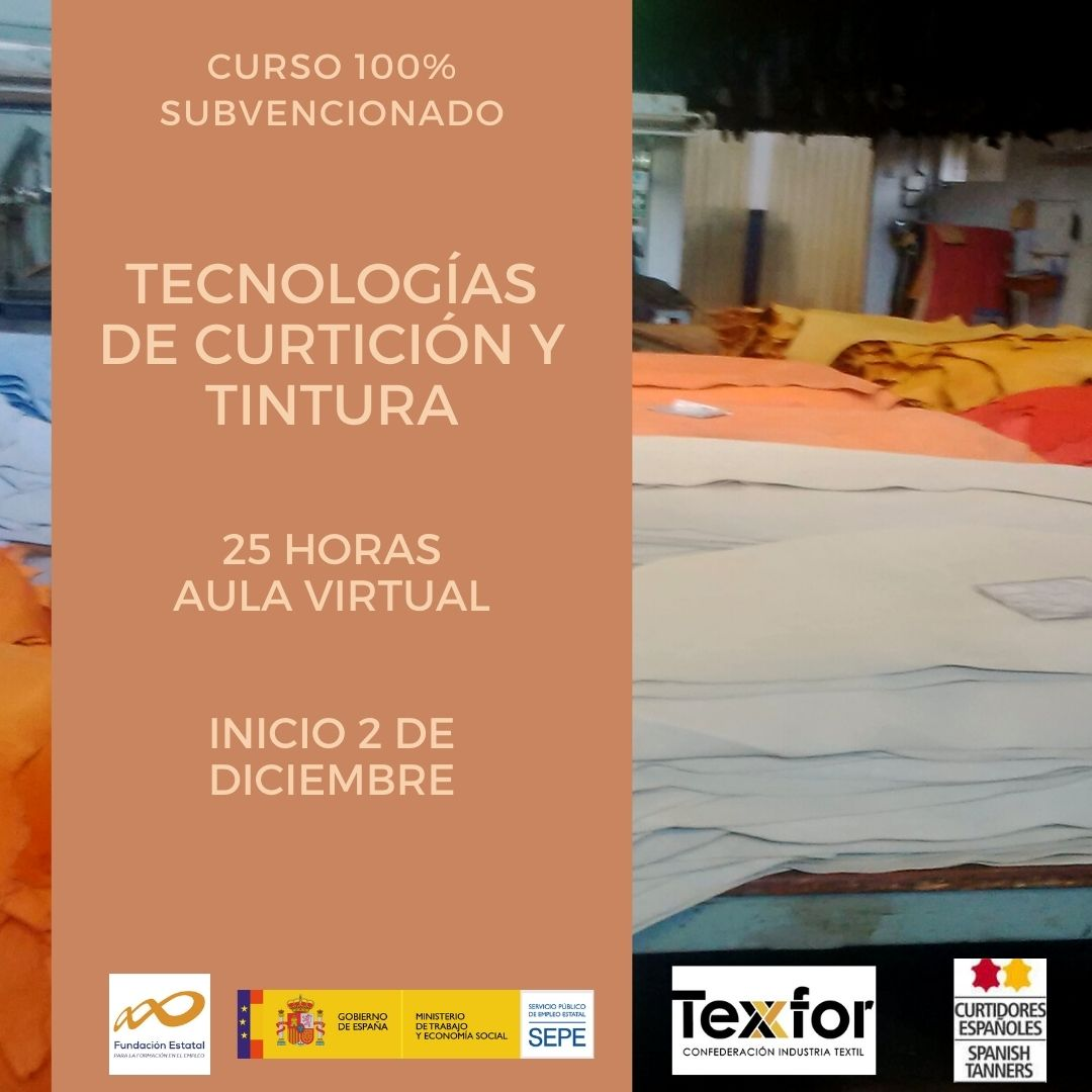 TCPF010PO - TECNOLOGÍAS DE CURTICIÓN Y TINTURA